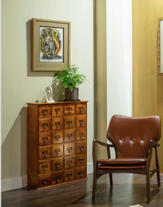 A shallow, but unique, card catalog cabinet adds interest and storage, while displaying a sculpture and a maiden hair fern.